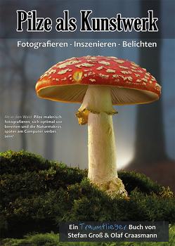 Pilze als Kunstwerk von Craasmann,  Olaf, Groß,  Stefan