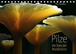 Pilze – die Stars der Waldbühne (Tischkalender 2019 DIN A5 quer) von Schmidbauer,  Heinz