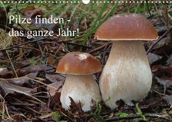 Pilze finden – das ganze Jahr! (Wandkalender 2020 DIN A3 quer) von Bindig,  Rudolf