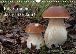 Pilze finden – das ganze Jahr! (Wandkalender 2020 DIN A4 quer) von Bindig,  Rudolf