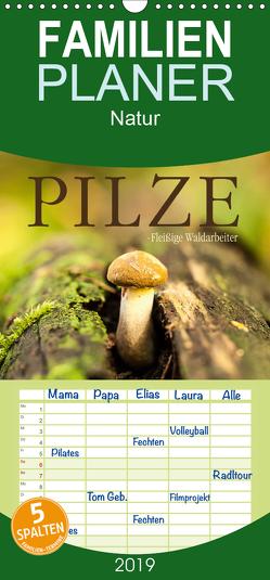 Pilze – fleißige Waldarbeiter – Familienplaner hoch (Wandkalender 2019 , 21 cm x 45 cm, hoch) von Wuchenauer pixelrohkost.de,  Markus