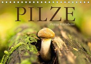 Pilze – fleißige Waldarbeiter (Tischkalender 2018 DIN A5 quer) von Wuchenauer pixelrohkost.de,  Markus
