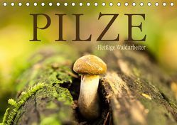 Pilze – fleißige Waldarbeiter (Tischkalender 2019 DIN A5 quer) von Wuchenauer pixelrohkost.de,  Markus