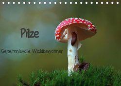 Pilze-Geheimnisvolle Waldbewohner (Tischkalender 2019 DIN A5 quer) von Klapp,  Lutz
