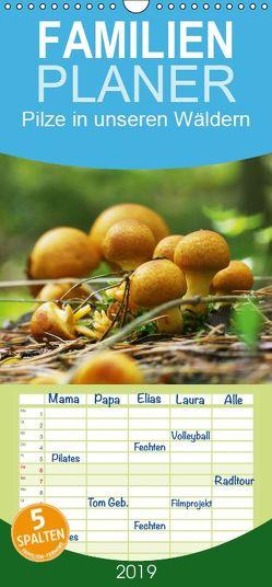 Pilze in unseren Wäldern – Familienplaner hoch (Wandkalender 2019 , 21 cm x 45 cm, hoch) von Design Fotografie by Tanja Riedel,  Avianaarts