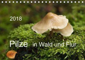 Pilze in Wald und Flur (Tischkalender 2018 DIN A5 quer) von Pompsch,  Heinz