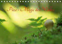 Pilze – Magie des Waldes (Tischkalender 2019 DIN A5 quer) von Klapp,  Lutz