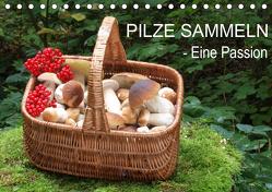 Pilze sammeln – eine Passion (Tischkalender 2020 DIN A5 quer) von Bindig,  Rudolf