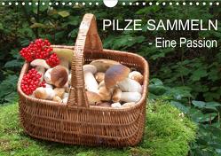 Pilze sammeln – eine Passion (Wandkalender 2021 DIN A4 quer) von Bindig,  Rudolf