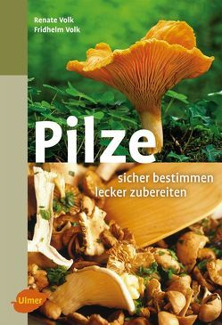 Pilze. Sicher bestimmen, lecker zubereiten von Volk,  Fridhelm, Volk,  Renate