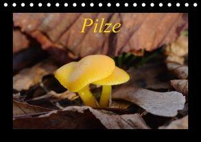 Pilze (Tischkalender 2018 DIN A5 quer) von Everaars,  Jeroen