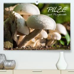 Pilze und Pilzgerichte (Premium, hochwertiger DIN A2 Wandkalender 2021, Kunstdruck in Hochglanz) von Stanzer,  Elisabeth