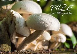 Pilze und Pilzgerichte (Wandkalender 2021 DIN A2 quer) von Stanzer,  Elisabeth