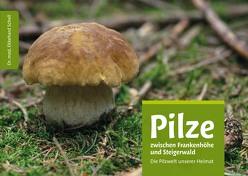 Pilze zwischen Frankenhöhe und Steigerwald von Schell,  Ekkehard