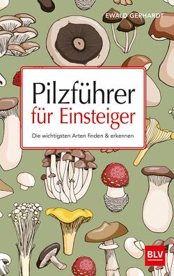 Pilzführer für Einsteiger von Gerhardt,  Ewald