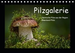 Pilzgalerie – Heimische Pilze aus der Region Rheinland-Pfalz (Tischkalender 2019 DIN A5 quer) von Wurster,  Beate
