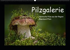 Pilzgalerie – Heimische Pilze aus der Region Rheinland-Pfalz (Wandkalender 2019 DIN A2 quer) von Wurster,  Beate