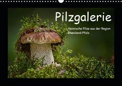 Pilzgalerie – Heimische Pilze aus der Region Rheinland-Pfalz (Wandkalender 2019 DIN A3 quer) von Wurster,  Beate