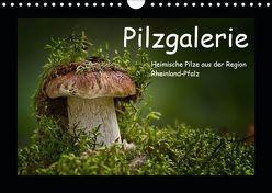 Pilzgalerie – Heimische Pilze aus der Region Rheinland-Pfalz (Wandkalender 2019 DIN A4 quer) von Wurster,  Beate