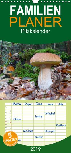Pilzkalender – Familienplaner hoch (Wandkalender 2019 , 21 cm x 45 cm, hoch) von Bindig,  Rudolf