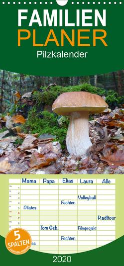 Pilzkalender – Familienplaner hoch (Wandkalender 2020 , 21 cm x 45 cm, hoch) von Bindig,  Rudolf