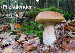 Pilzkalender (Wandkalender 2019 DIN A3 quer) von Bindig,  Rudolf