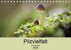Pilzvielfalt (Tischkalender 2020 DIN A5 quer) von Reim,  Katharina