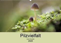 Pilzvielfalt (Premium, hochwertiger DIN A2 Wandkalender 2020, Kunstdruck in Hochglanz) von Reim,  Katharina