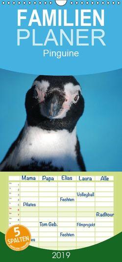 Pinguine 2019 – Familienplaner hoch (Wandkalender 2019 , 21 cm x 45 cm, hoch) von Groos,  Ilka