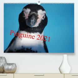 Pinguine 2021 (Premium, hochwertiger DIN A2 Wandkalender 2021, Kunstdruck in Hochglanz) von Groos,  Ilka