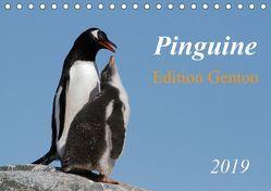 Pinguine – Edition Gentoo (Tischkalender 2019 DIN A5 quer) von Schlögl,  Brigitte
