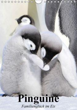 Pinguine. Familienglück im Eis (Wandkalender 2018 DIN A4 hoch) von Stanzer,  Elisabeth