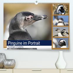 Pinguine im Portrait – Frackträger in Südafrika (Premium, hochwertiger DIN A2 Wandkalender 2020, Kunstdruck in Hochglanz) von und Yvonne Herzog,  Michael
