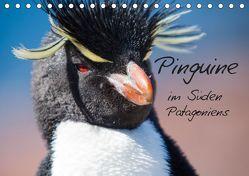 Pinguine im Süden Patagoniens (Tischkalender 2019 DIN A5 quer) von Reuke,  Sabine