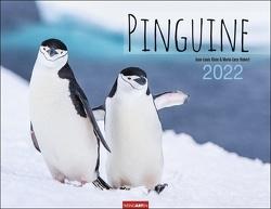 Pinguine Kalender 2022 von Hubert,  Marie-Luce, Klein,  Jean-Louis, Weingarten