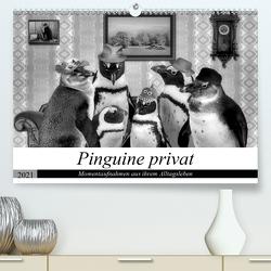 Pinguine privat (Premium, hochwertiger DIN A2 Wandkalender 2021, Kunstdruck in Hochglanz) von glandarius,  Garrulus