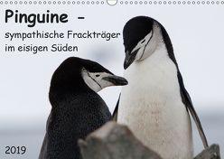 Pinguine – sympathische Frackträger im eisigen Süden (Wandkalender 2019 DIN A3 quer) von Utelli,  Anna-Barbara