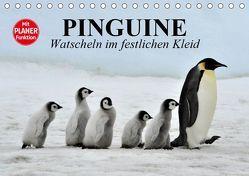 Pinguine – Watscheln im festlichen Kleid (Tischkalender 2019 DIN A5 quer) von Stanzer,  Elisabeth