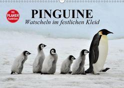 Pinguine – Watscheln im festlichen Kleid (Wandkalender 2019 DIN A3 quer) von Stanzer,  Elisabeth