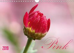 Pink (Wandkalender 2019 DIN A4 quer) von SchnelleWelten