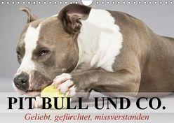 Pit Bull und Co. – Geliebt, gefürchtet, missverstanden (Wandkalender 2018 DIN A4 quer) von Stanzer,  Elisabeth