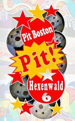 Pit! Hexenwald von Boston,  Pit