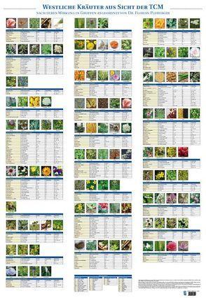 Plakat Westliche Kräuter aus Sicht der TCM mit 122 Abbildungen von Ploberger,  Florian