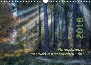 Planungskalender Märchenwald 2018 (Wandkalender 2018 DIN A4 quer) von Zitzler,  Hans