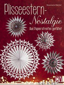 Plisseestern-Nostalgie von Mächel ,  Rosemarie