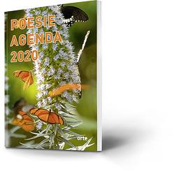 Poesie Agenda 2020 von Fäh,  Jolanda, Mathies,  Susanne
