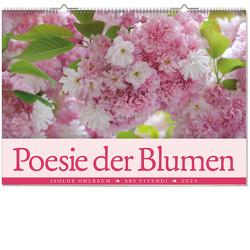 Poesie der Blumen 2020 von Isolde Ohlbaum