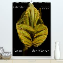 Poesie der Pflanzen (Premium, hochwertiger DIN A2 Wandkalender 2020, Kunstdruck in Hochglanz) von Termeer,  Tonio
