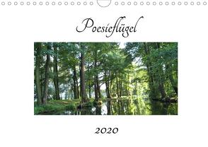 Poesieflügel 2020 (Wandkalender 2020 DIN A4 quer) von Roß / Poesieflügel,  Grit