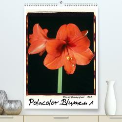 Polacolor Blumen 1 (Premium, hochwertiger DIN A2 Wandkalender 2020, Kunstdruck in Hochglanz) von Huempfner,  Franz